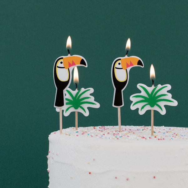 Novelty Candles My Toucan 6 Pcs 1